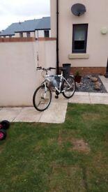 26 Inch Bike