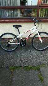 Gents Apollo Tokko mountain bike