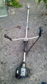 PETROL STRIMMER WITH CHANGEAGLE HEAD