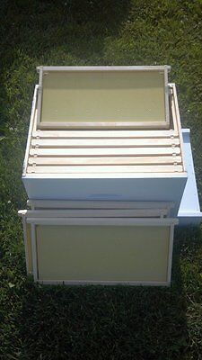 Deep Honey Super Deep Box Assembledpainted-for Bee Hive W Framesfoundation