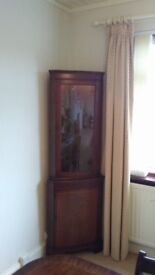 Wall mounted corner unit and free standing display cabinet. Fire screen.