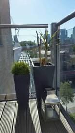 Planters x 2 from Habitat