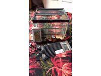 Glass tank for arachnids or reptiles