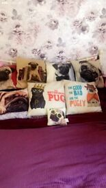 Pug cushion collection