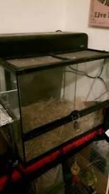 Large Exo terra viv vivarium glass tank for lizard tarantula snake