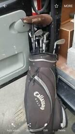 Lynx Predator 2 golf clubs
