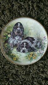 Edwardian bone china plate