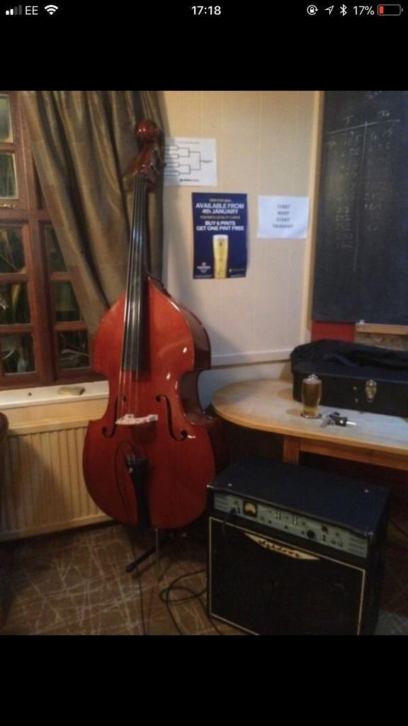 Double bass with Pickups