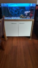 EHEIM 200l Aquarium Fish Tank for sale!!!