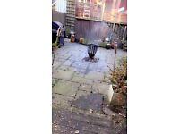 Paving slabs /patio