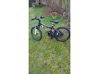 Ridgeback Bicycle MX20 (Black)