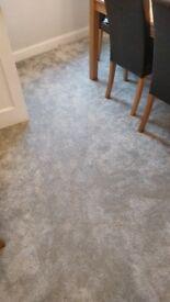 Premium Grey Carpet 2x4 m