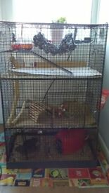 Degu cage, large 3 storey cage, complete with bowls, hammock, wheel, waterbote