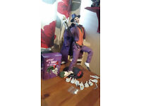 DC Comics Action Figure 1/6 The Joker 30 cm with free Joker money tin!