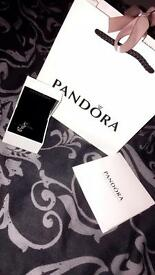Pandora lucky anchor charm