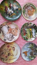 6 Collectors plates Spode, Wedgewood, Royal Worcester, etc