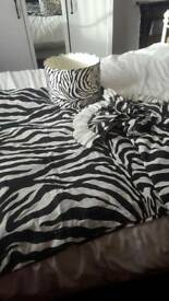 Zebra print curtains and lampshade