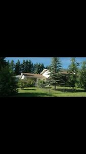 Sylvan Lake Rental