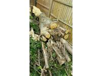 Free logs and large stumps