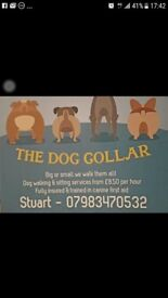 The Dog Collar dog walking service