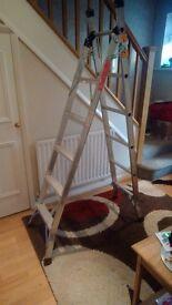 3 way step/extension/stairwell ladder.