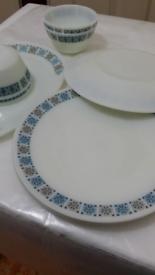 Designed dinner plates