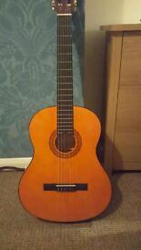 Spanish/classical guitar
