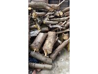 Logs galore! Free, collect only, mixed sizes, seasoned