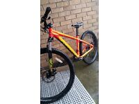 Adults specialised mountain bike