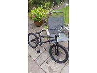 Mongoose Program Bmx Bike