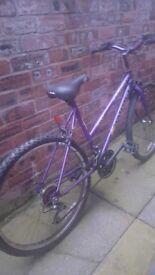 Bike 35 £