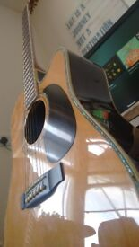 Zager ZAD-80CE EZ play Acoustic guitar with Fishman electronics