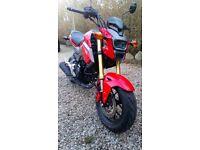 Honda MSX SF 125cc