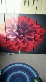 Set of 3 large canvas set.