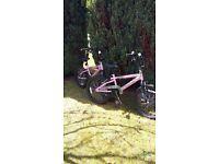 Two girls BMX bikes