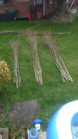 Willow whips fencing hedging garden screen