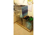Bargain 2 Fsh tanks +2 Fulval filters,