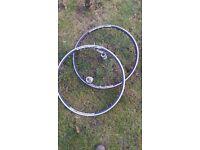 Ambrosio WS23 Front & Rear Bike Wheels