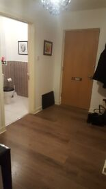 2 bedroom flat Dennistoun, unfurnished - **available first week April**