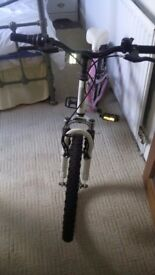 Girls vertigo 20inch bike