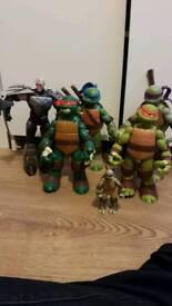 Large turtles and shredder