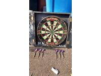 Winmau Professional Dartboard