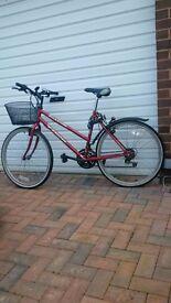 Bicycle, Ladies