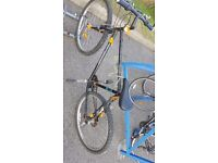 Cheap and good to go bicycle. Free lock !!