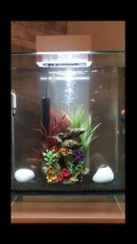 Fluval Edge 46l Tropical Fish Tank