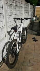 Barcauda colt mountain bike