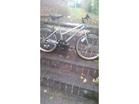 Meduim or teenage mountain bike bicycle 15 speed 24 inch wheels