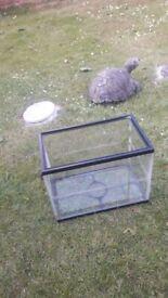 SMALL GLASS FISH TANK .