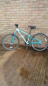 Teenage Apollo Girls Mountain bike.