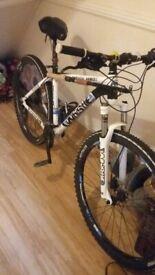 Whistle patwin mountin bike 29 inch